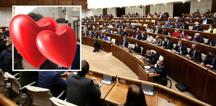 slovenska politika ma novy par