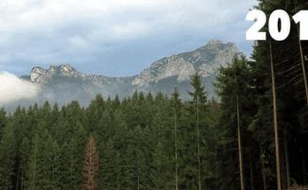 priroda tatry smutny pohlad slovensko lykozrut smrekovy tazba dreva kalamita tatry