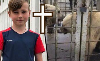 nikata chlapca napadli medvede zomrel rusko